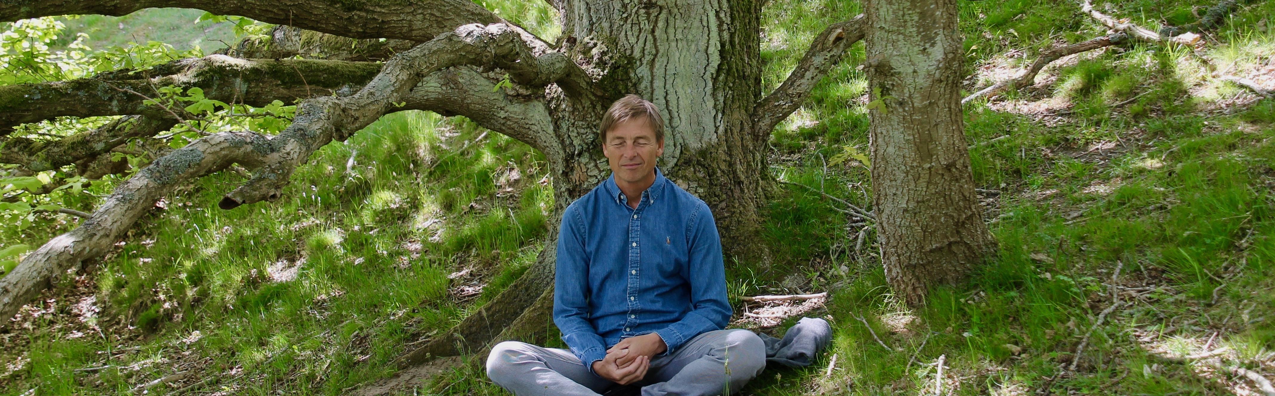 Hvordan virker meditation og hvad siger videnskaben?