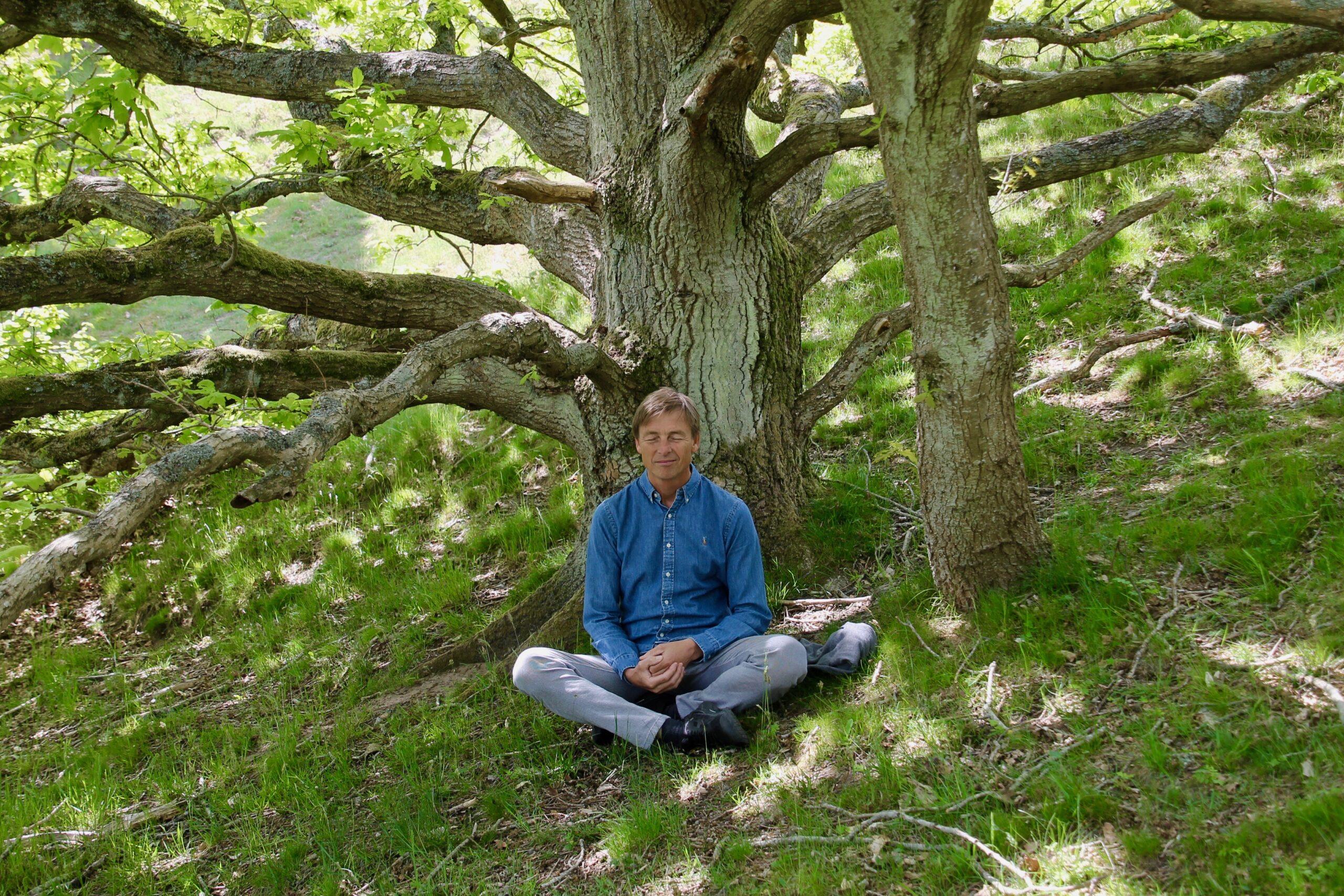 Bevidstheds Meditation